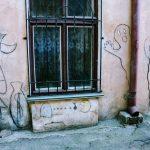 наскальная живопись