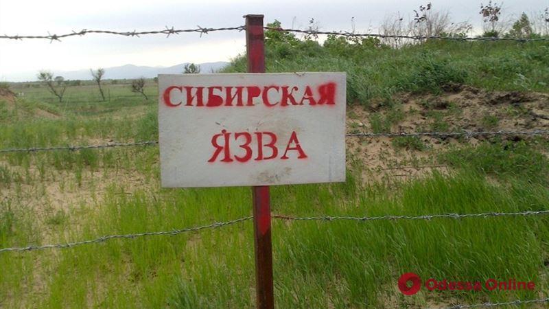 Не только коронавирус: в Одесской области зарегистровано подозрение на сибирскую язву