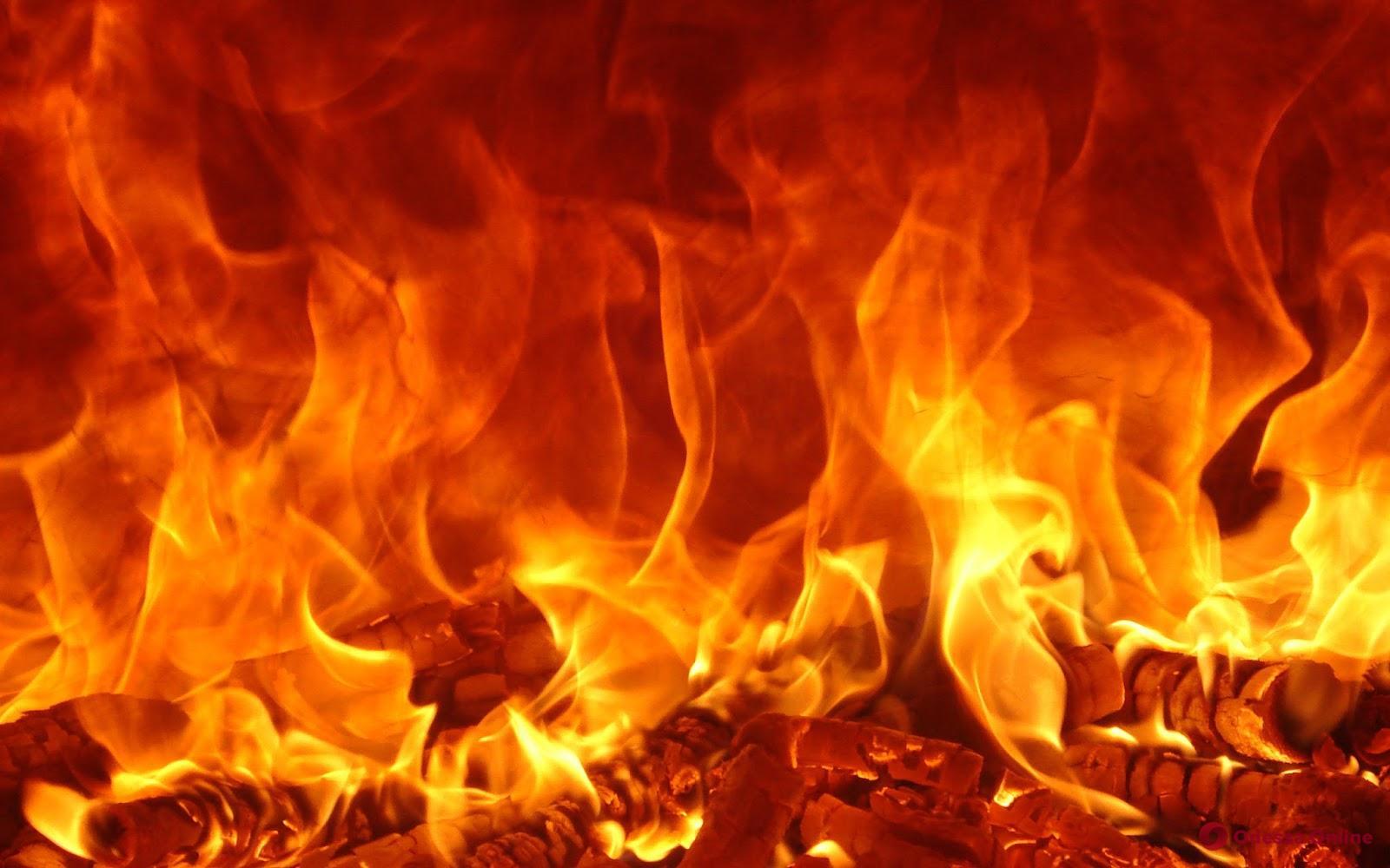 В Одесской области тушили пожар на складе винзавода