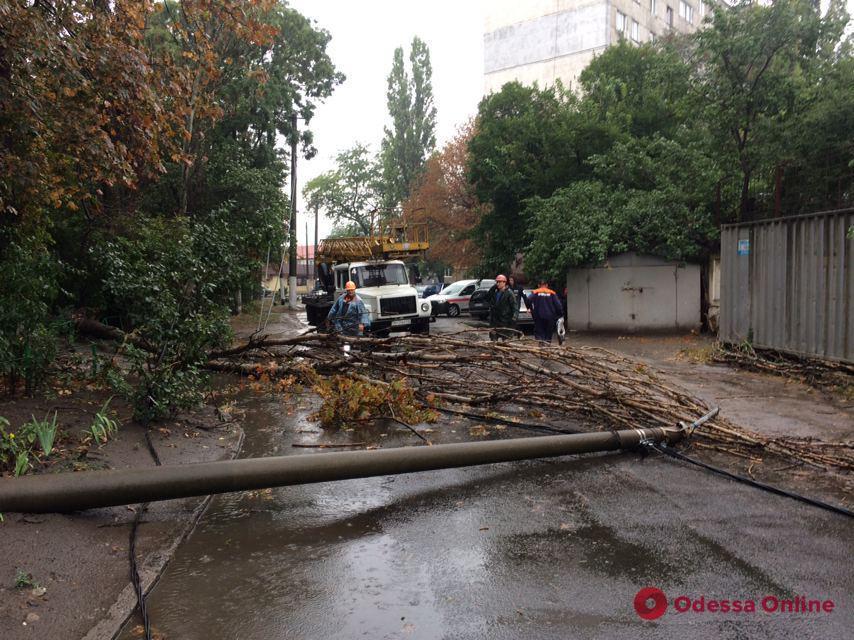 В Одессе столб рухнул на автомобиль (фото)