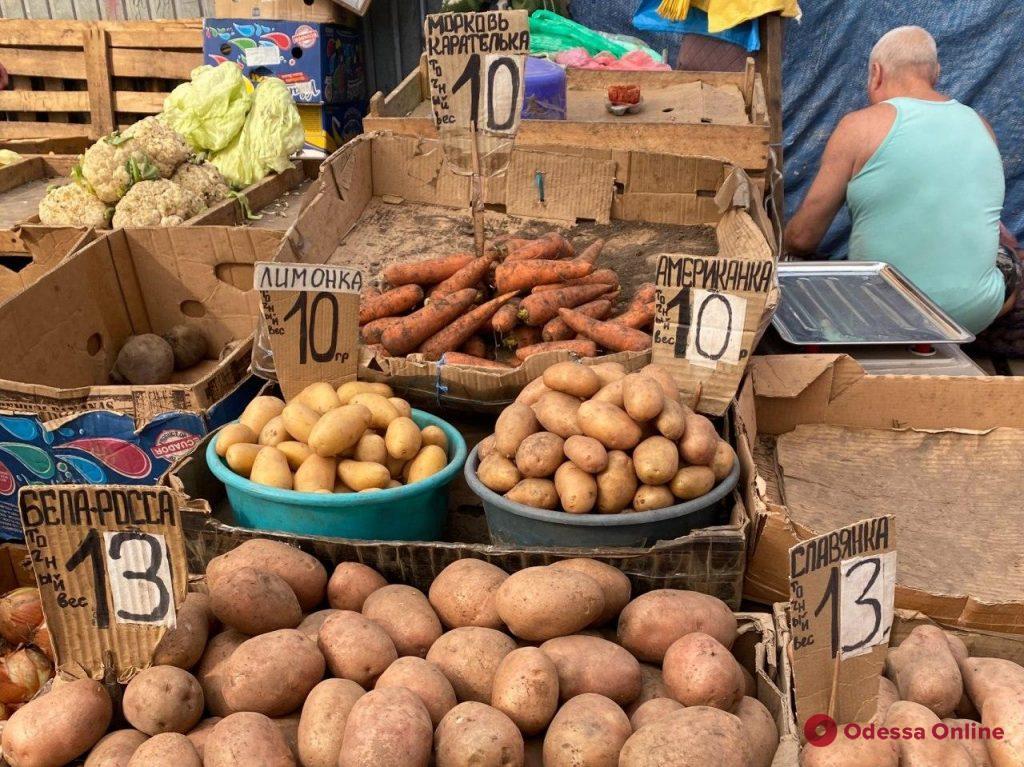 Чайный гриб, сом и инжир: воскресные цены на одесском «Привозе»