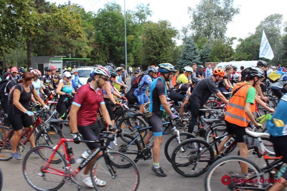 В Одессе стартовали традиционные «велосотка» и пеший переход по Поясу Славы (фото)