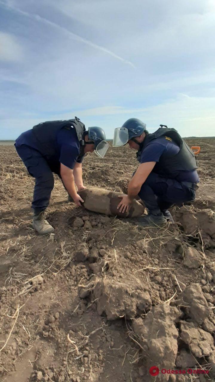 В Одесской области уничтожили стокилограммовую авиабомбу