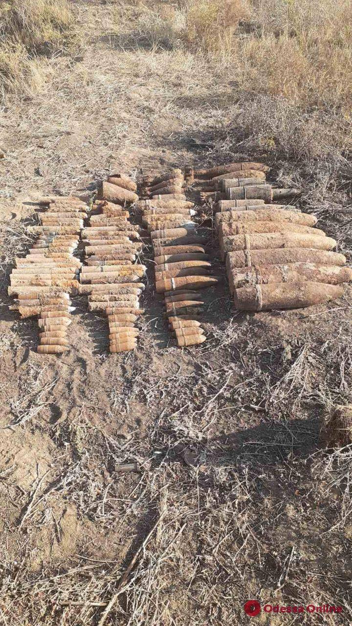 Житель Одесской области нашел в поле почти сотню боеприпасов времен Второй мировой
