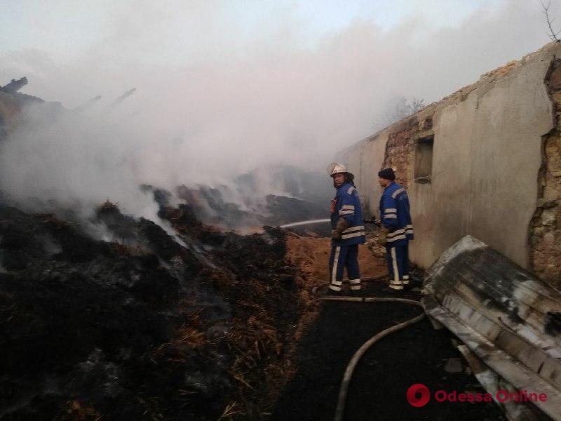 В Одесской области сгорели хозпостройка с 15 тоннами сена и Mitsubishi