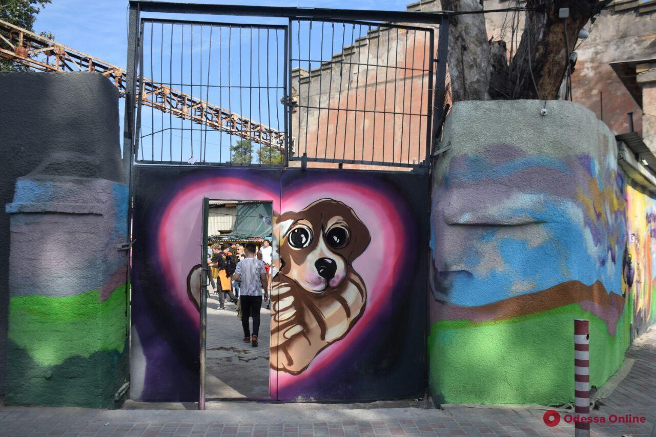Четыре месяца после пожара: в одесском приюте для животных «Ковчег» провели день открытых дверей (фото)