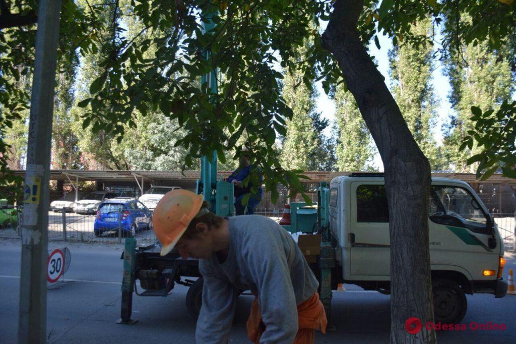«Вечерняя Одесса»: во дворах на поселке Котовского устанавливают энергосберегающие светильники