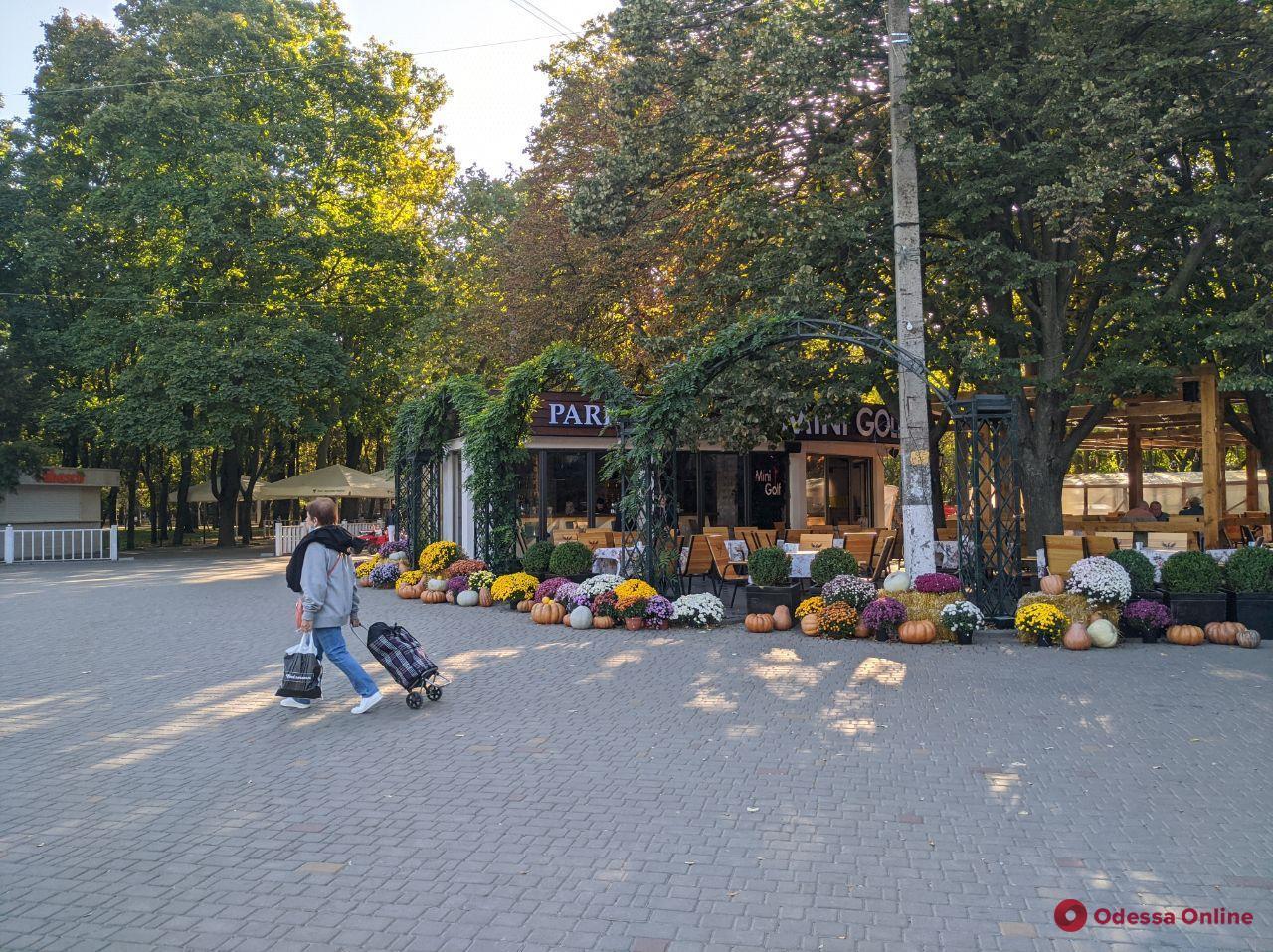 Прогулка по осеннему парку Горького (фоторепортаж)