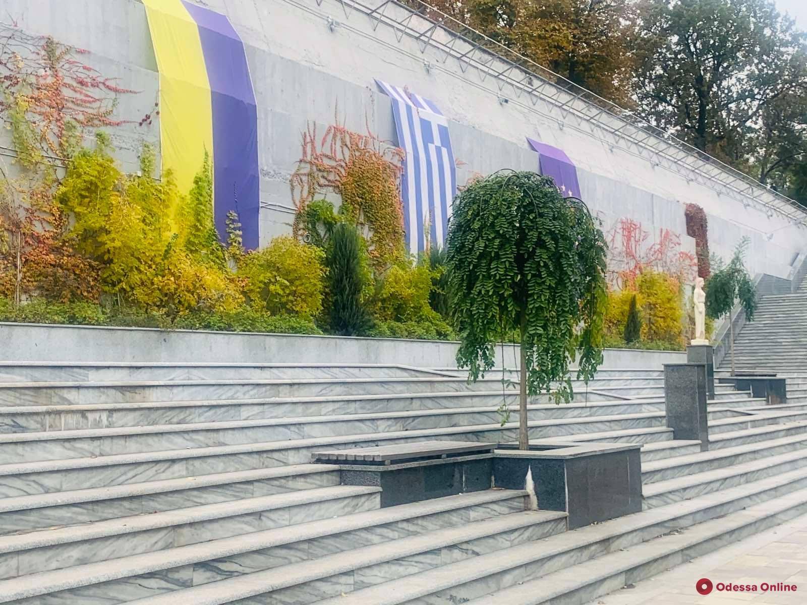 В Греческом парке высадят почти две тысячи многолетних растений