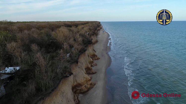 Одесская прокуратура пытается вернуть государству 29 гектаров лесного массива