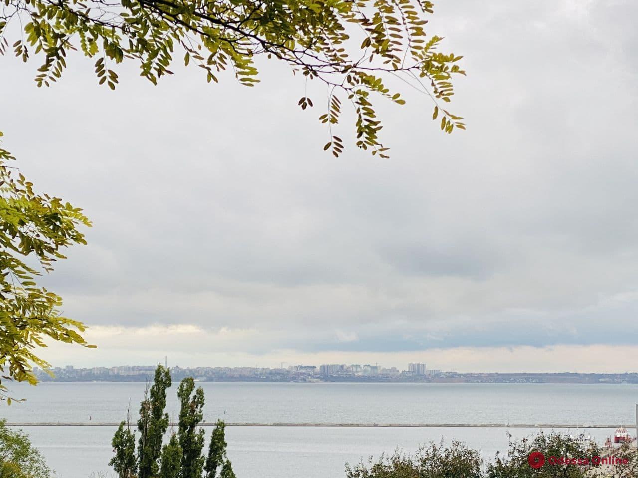 Синоптики рассказали, какой будет погода в Одессе в понедельник