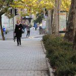 photo_2020-11-11_10-13-41 (3)