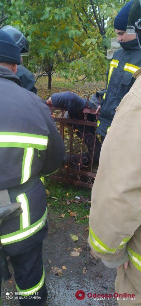 Под Одессой мужчина застрял на металлической ограде