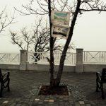 photo_2020-12-03 19.59.44