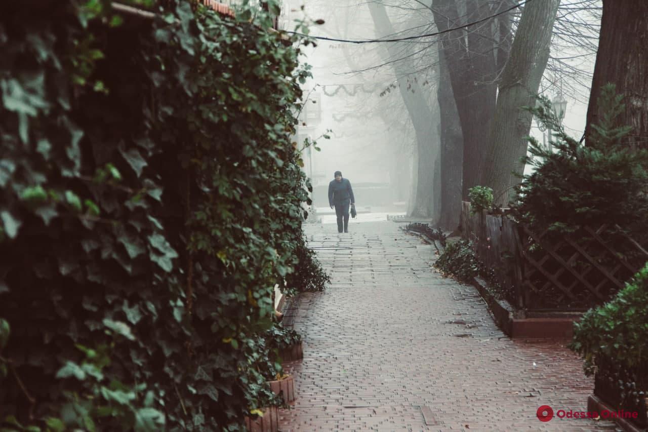 О погоде: в среду в Одесской области ожидается туман