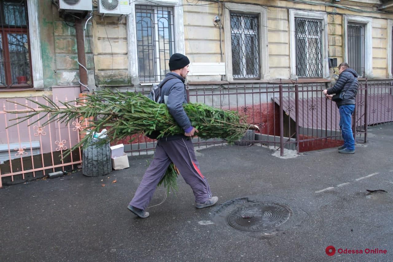 За девять часов до праздника: серьезного ажиотажа на «Привозе» не наблюдается
