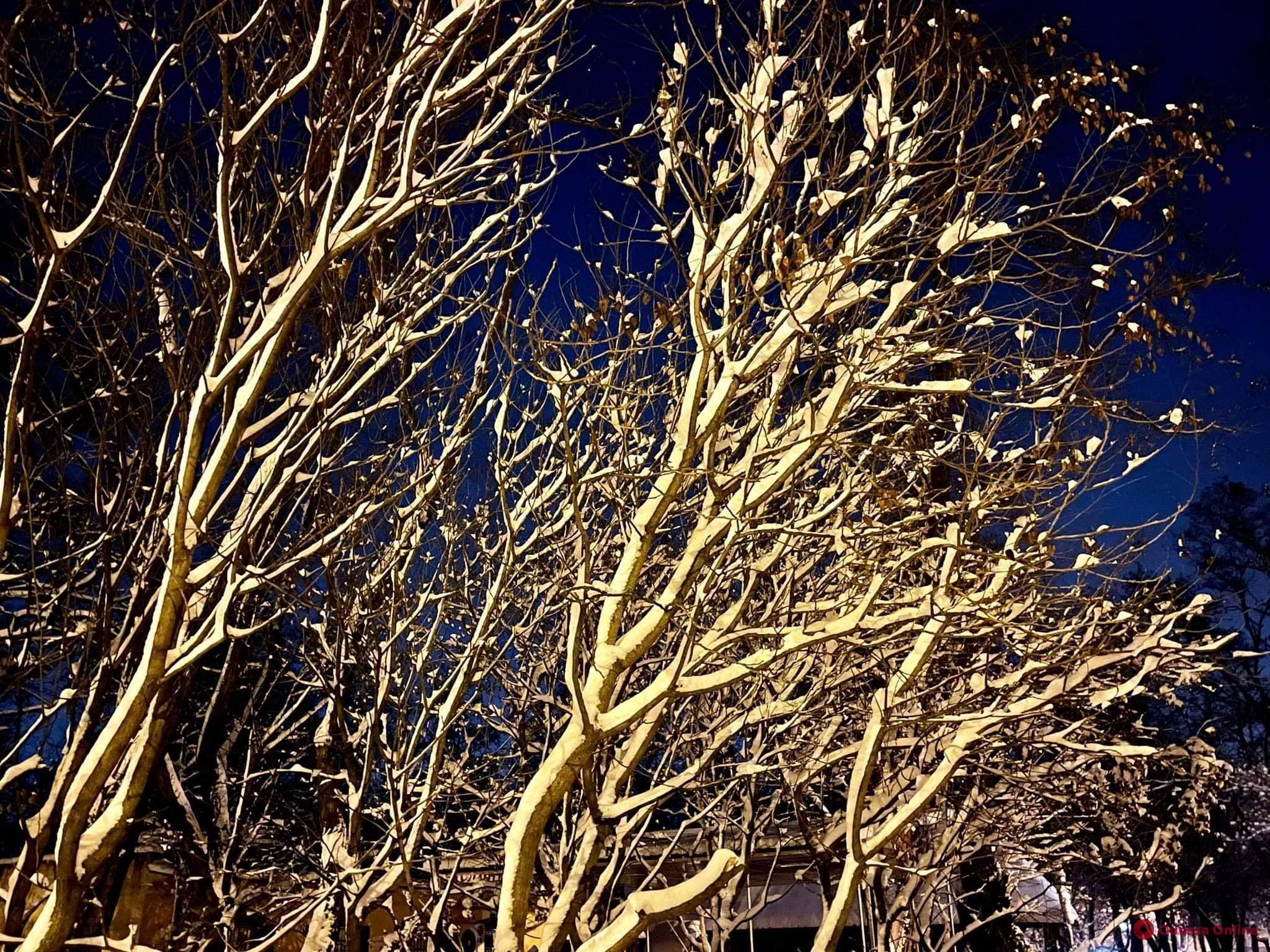 О погоде: в Одесской области ночью ожидается до -16°C