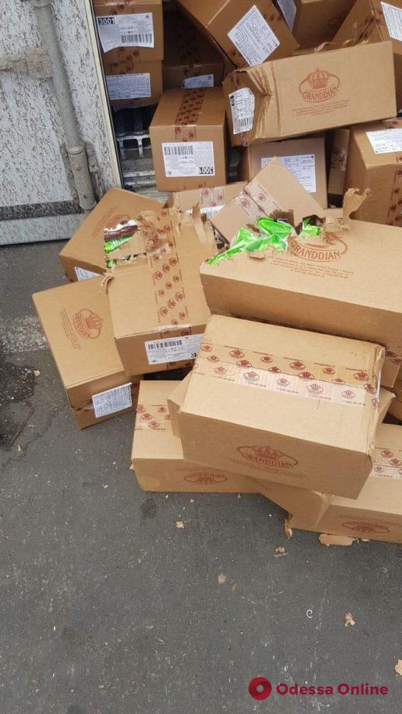 Кошка три недели путешествовала морем из Одессы в Израиль в контейнере с конфетами