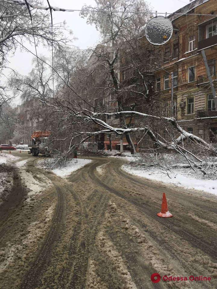 Вторые сутки без сна: в Одессе коммунальщики всю ночь ликвидировали последствия стихии (фото, видео)