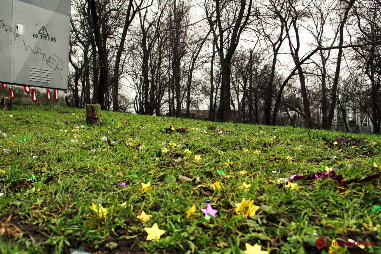 Зеленый январь в Дюковском парке (фоторепортаж)