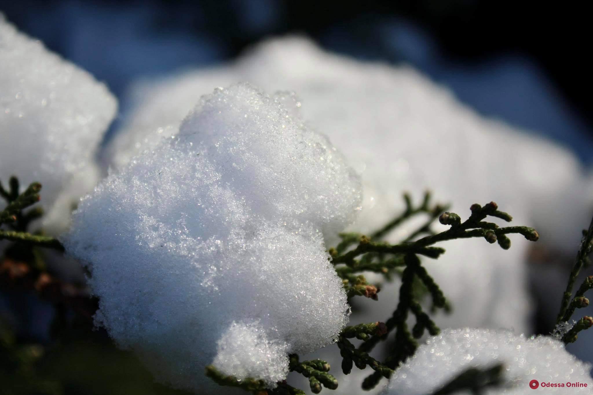 О погоде: днем 17 января в Одессе ожидается 7-9 °С мороза