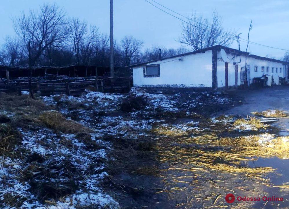 На частном подворье в Рени сгорели 15 тонн сена