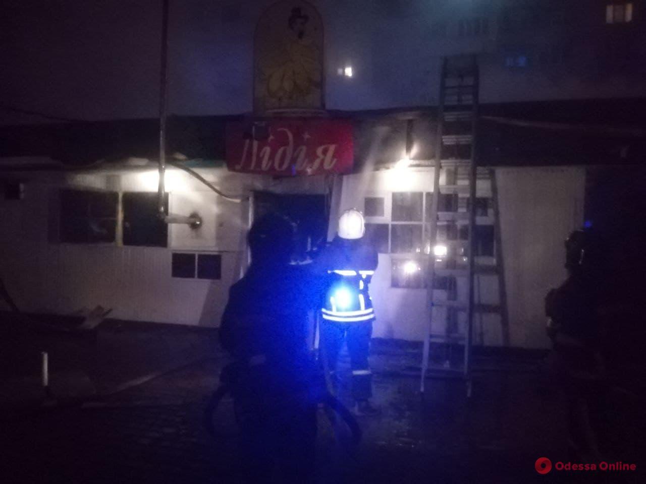 На поселке Котовского во время пожара в заброшенном кафе погибло 70 кур