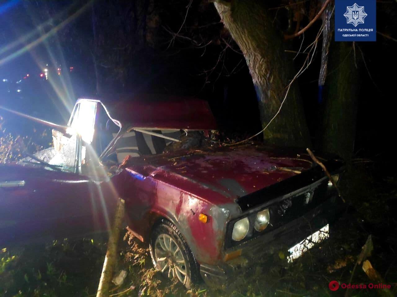 На Балтской дороге дерево рухнуло на легковушку – двое пострадавших
