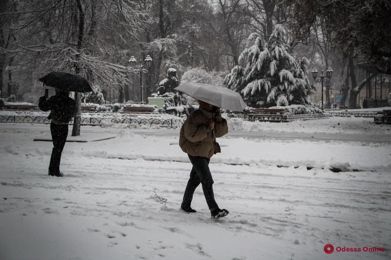 В Одессе усиливаются метель и ветер — горожан просят оставаться дома