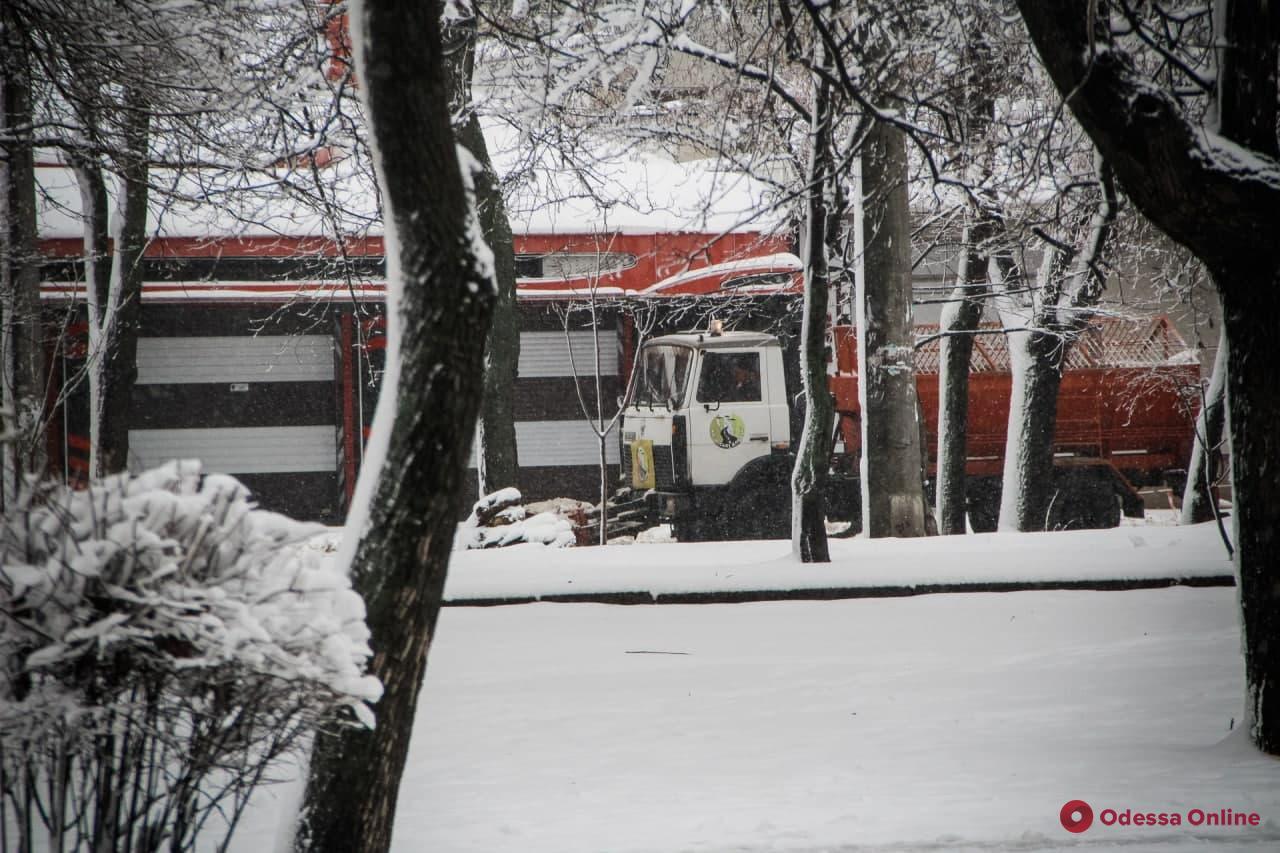 Зима атакует: Одесса под снежным покровом (фоторепортаж)