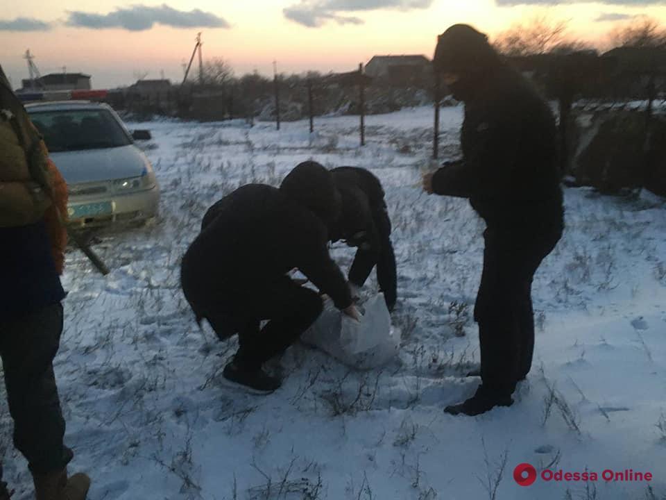В Одесской области мужчина застрелил хаски