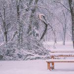 снег зима погода