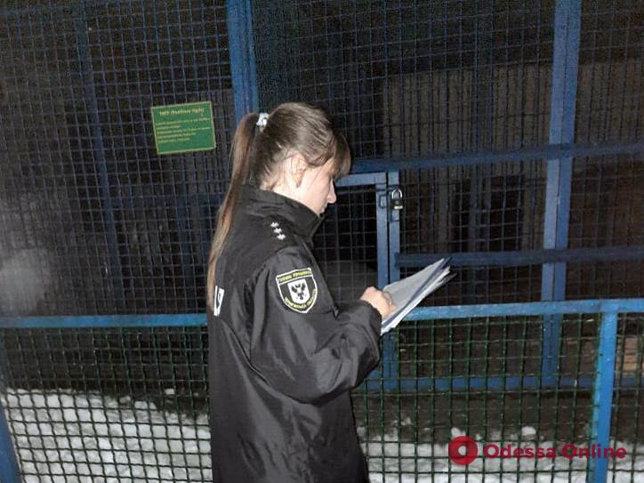В Черниговской области тигр загрыз сотрудника зоопарка