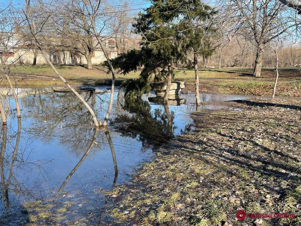 Последствия непогоды: пруд в парке Савицкого вышел из берегов (фотофакт)