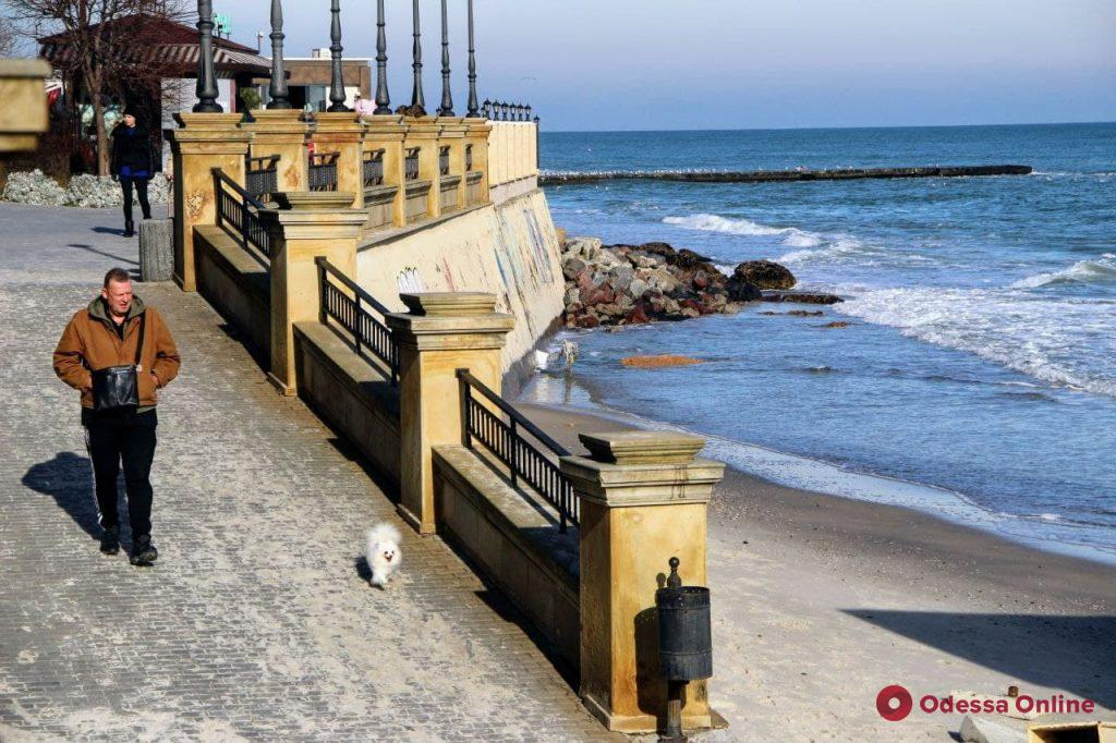 В Одессу на короткое время пришла весна: фоторепортаж с пляжа «Золотой берег»