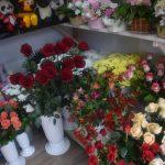 photo_2021-02-14_13-56-43 (2)