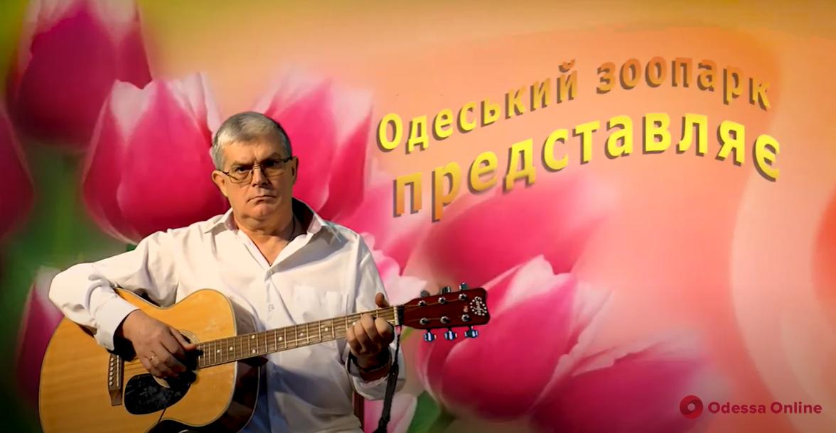 Директор Одесского зоопарка оригинально поздравил женщин с наступающим 8 марта (видео)