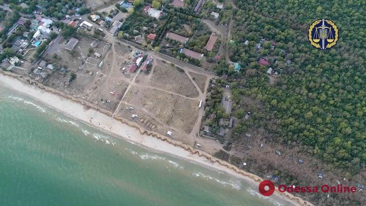 Суд вернул государству часть лесного массива урочища «Лебедевка» в Одесской области