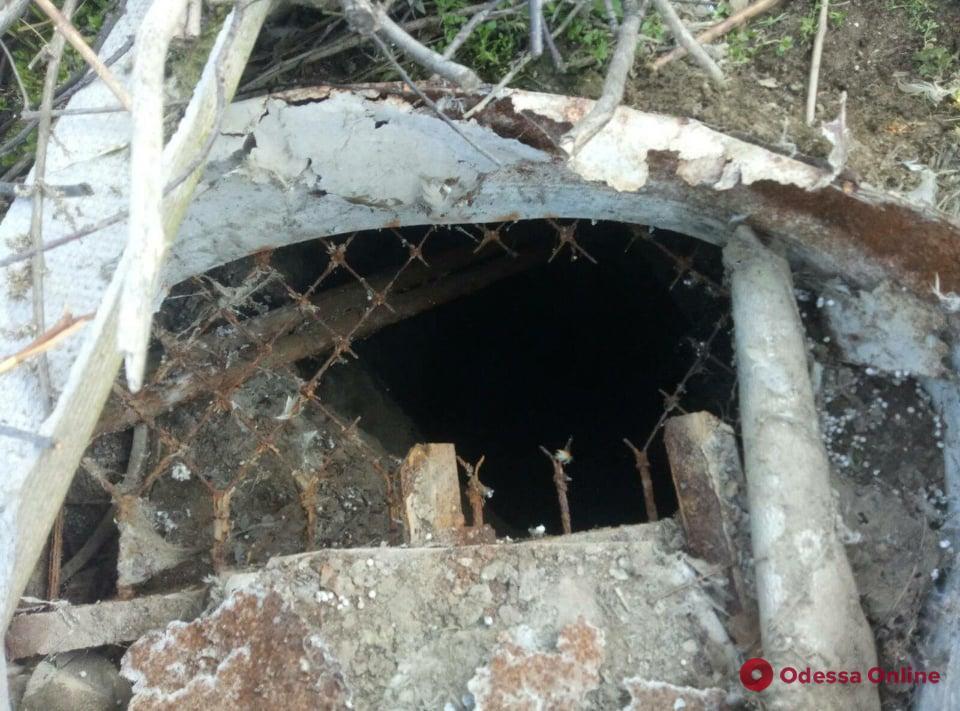 В Одесской области сотрудники ГСЧС спасли провалившуюся в яму собаку