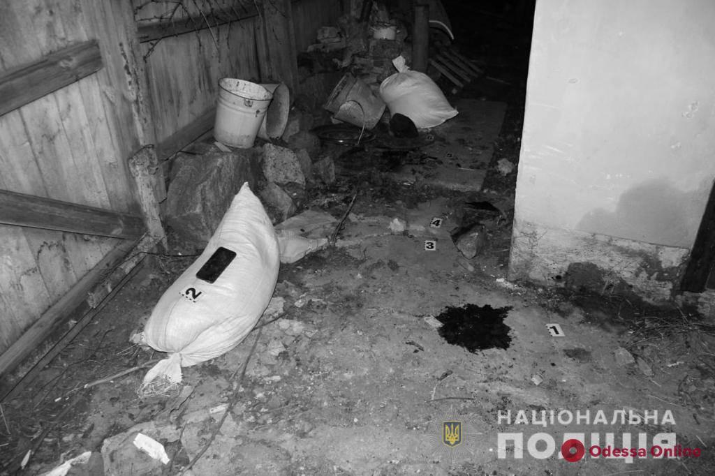 В Одесской области мужчина получил камнем по голове за звонок в полицию