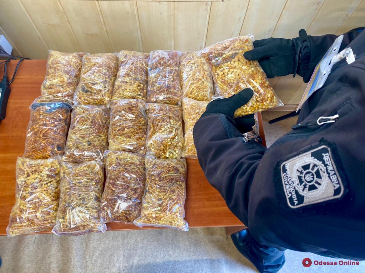 В Черноморском порту пограничники нашли контрабандный янтарь (фото, видео)