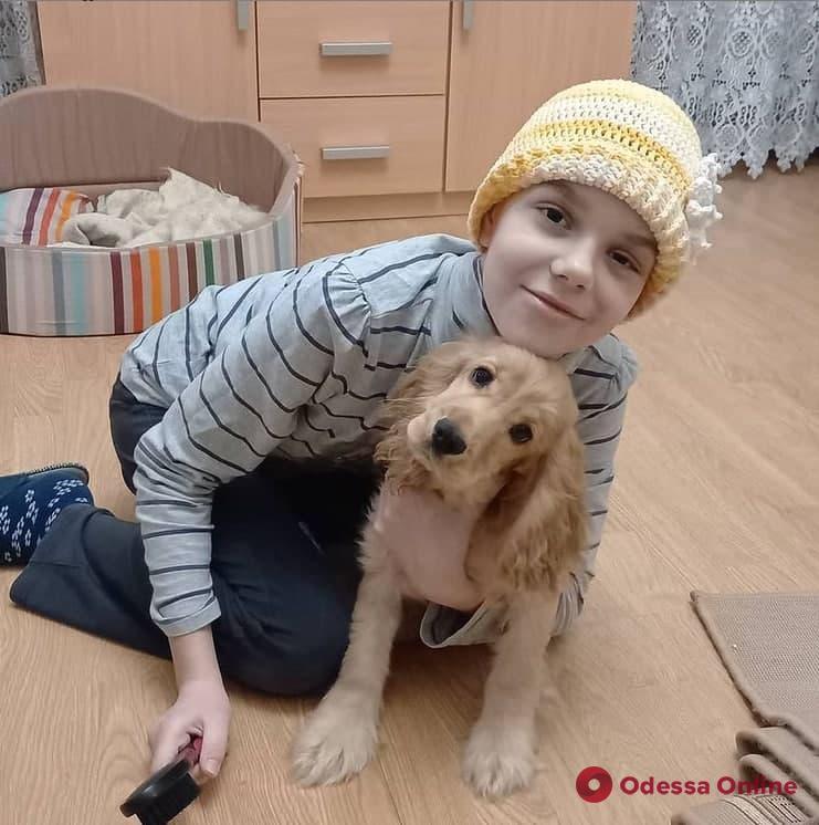 Пострадавшую в ДТП на Разумовской 11-летнюю девочку выписали из больницы