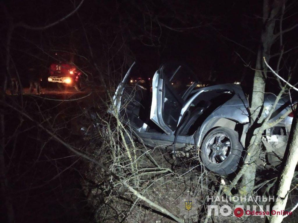 На трассе Одесса — Кучурган автомобиль въехал в дерево: водитель погиб (фото)