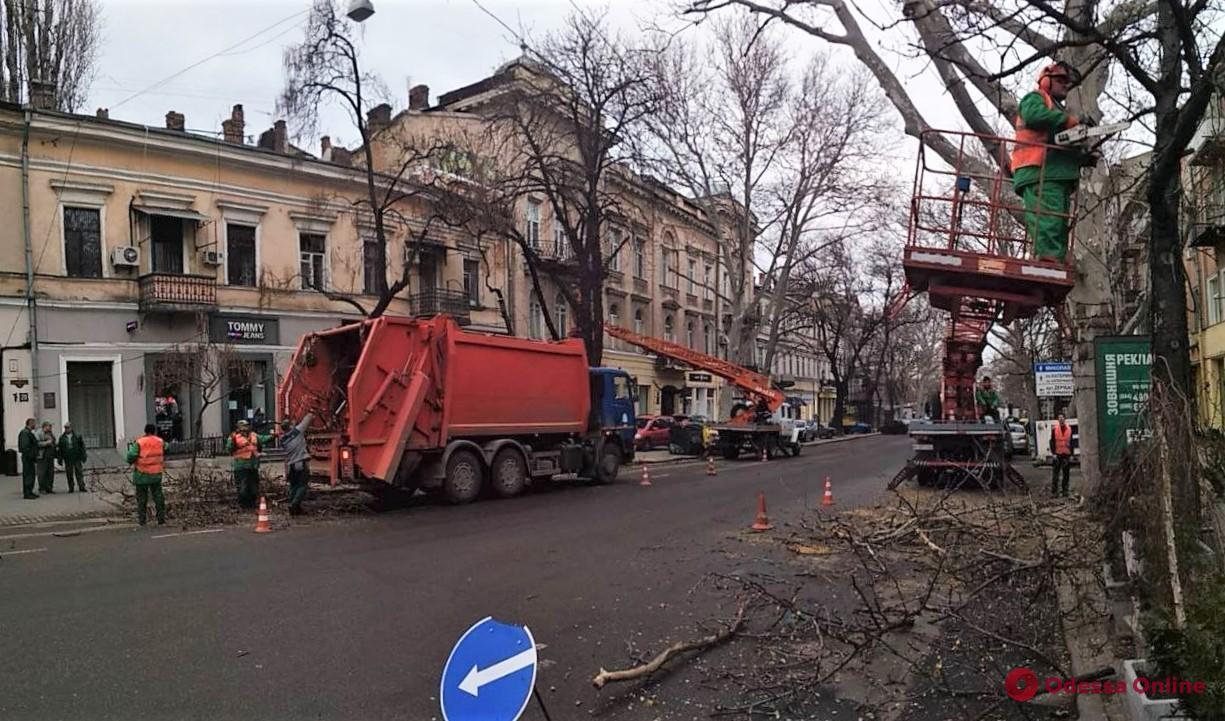 На Екатерининской из-за обрезки деревьев затруднено движение транспорта