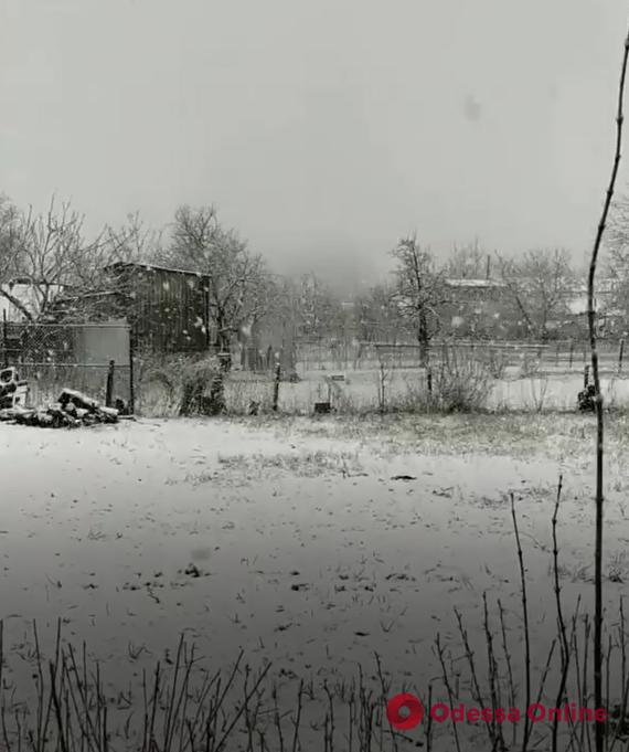 Две недели до мая: на севере Одесской области выпал снег (видео)