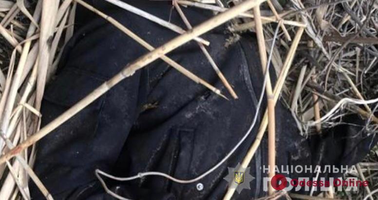 В камышах на Объездной дороге нашли труп сбитого парня — полиция устанавливает его личность и ищет свидетелей ДТП