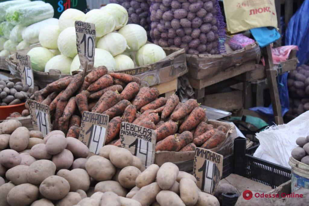 Шампиньоны, кабачок и авокадо: воскресные цены на одесском «Привозе»