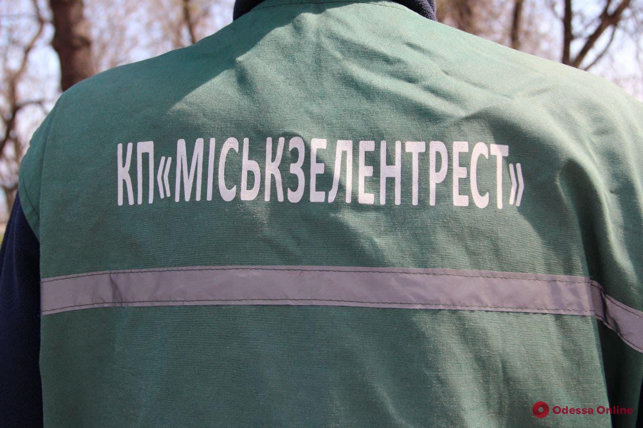 В Одессе появятся модульные домики для коммунальщиков