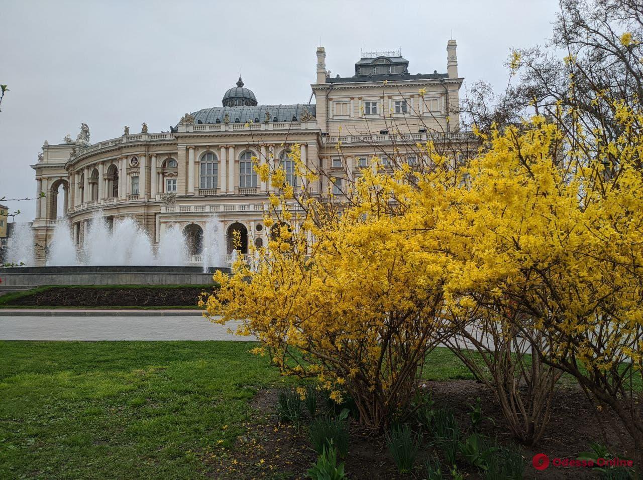 В Одессе «минировали» оперный театр