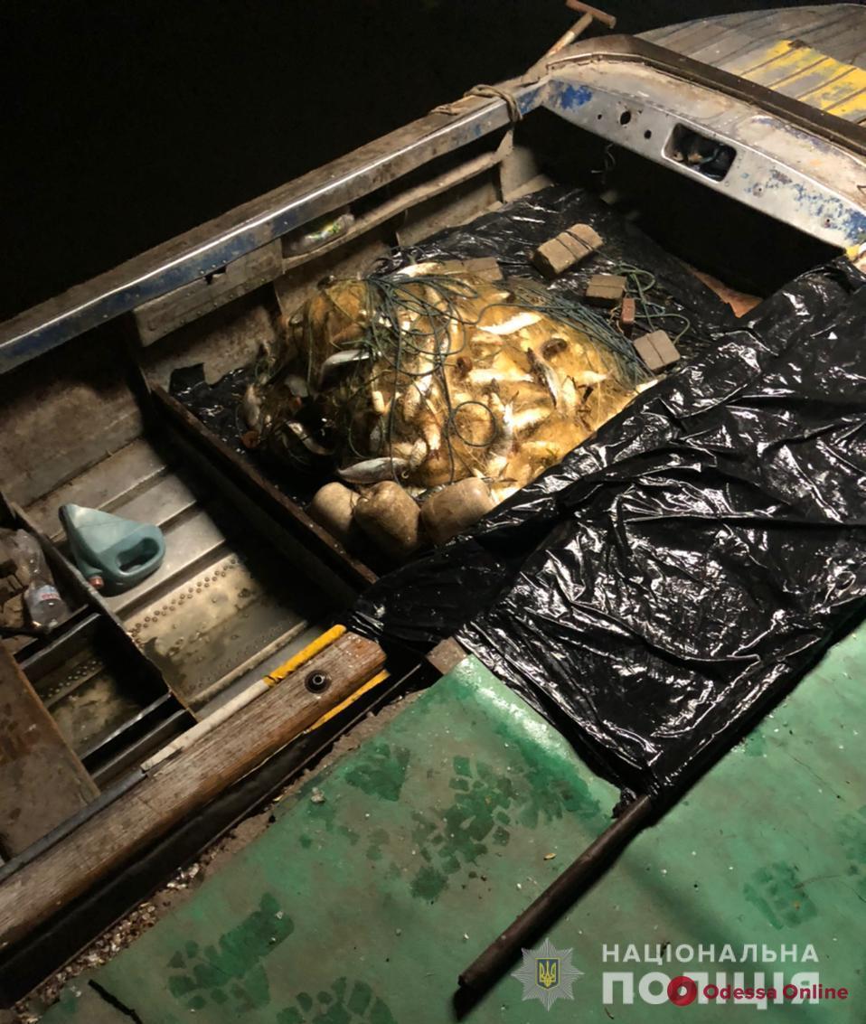В Нижнеднестровском парке браконьеры наловили рыбы на 200 тысяч